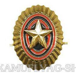 Кокарда металлическая РА малая со звездой, золотая
