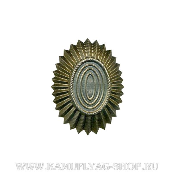 Кокарда металлическая РА нов.образца, малая, защитная